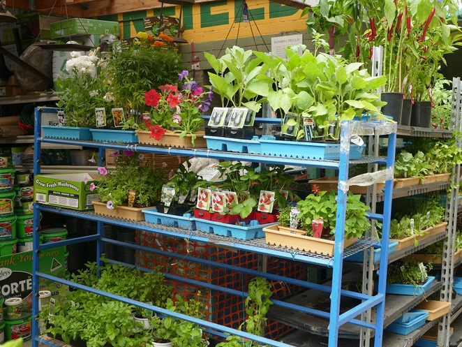 Enfield Produce Pet & Garden Centre