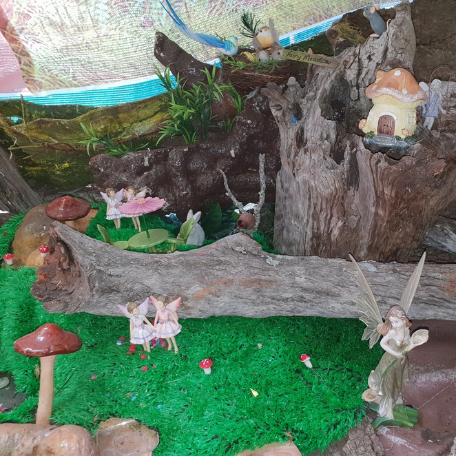 Fairy Dell, Toowoomba, children's parties