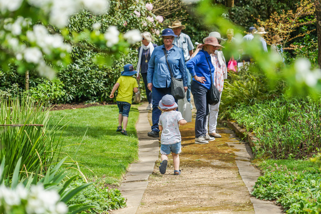 garden lovers' fair 2019, community event, fun things to do, mount macedon & district horticultural society, meet the growers, green thumb, gardening, plant and garden treasures, rare plants, specialist nurseries, handcrafted sculptures, garden furniture, garden tools, gardening books, gardens of bolobek