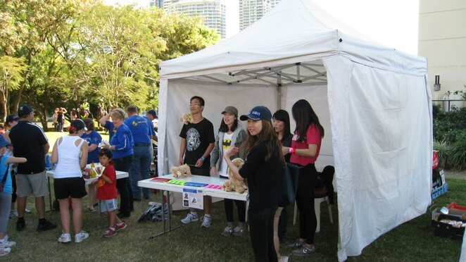 Health & Fitness, Charity, Fundraising, Outdoors, Parks, West End, Near Brisbane, Fun Things to Do, Family