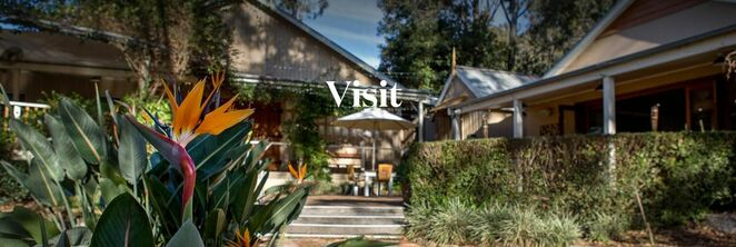 hunter valley events, hunter valley wineries, hunter valley tasting events, what wineries to visit in the hunter