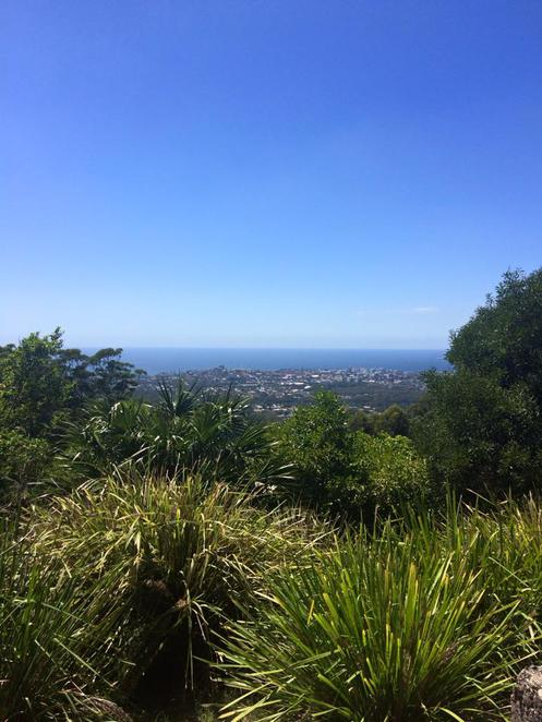 mount keira, ken ausburn, walk, track, mountain, hike, wollongong, south coast, climb, base to summit, illawarra, south coast, nsw
