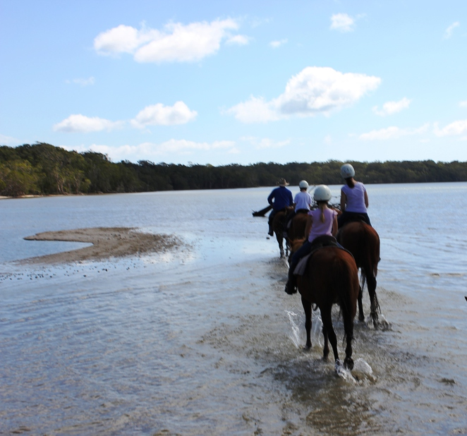 Noosa Horse Riding, Horses, Horse riding, Noosa, School Holidays, School Holiday Activities
