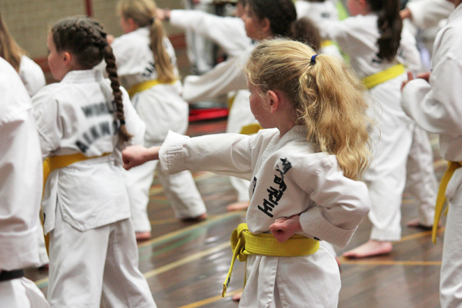 tae kwon do, sport, exercise, school holiday activities