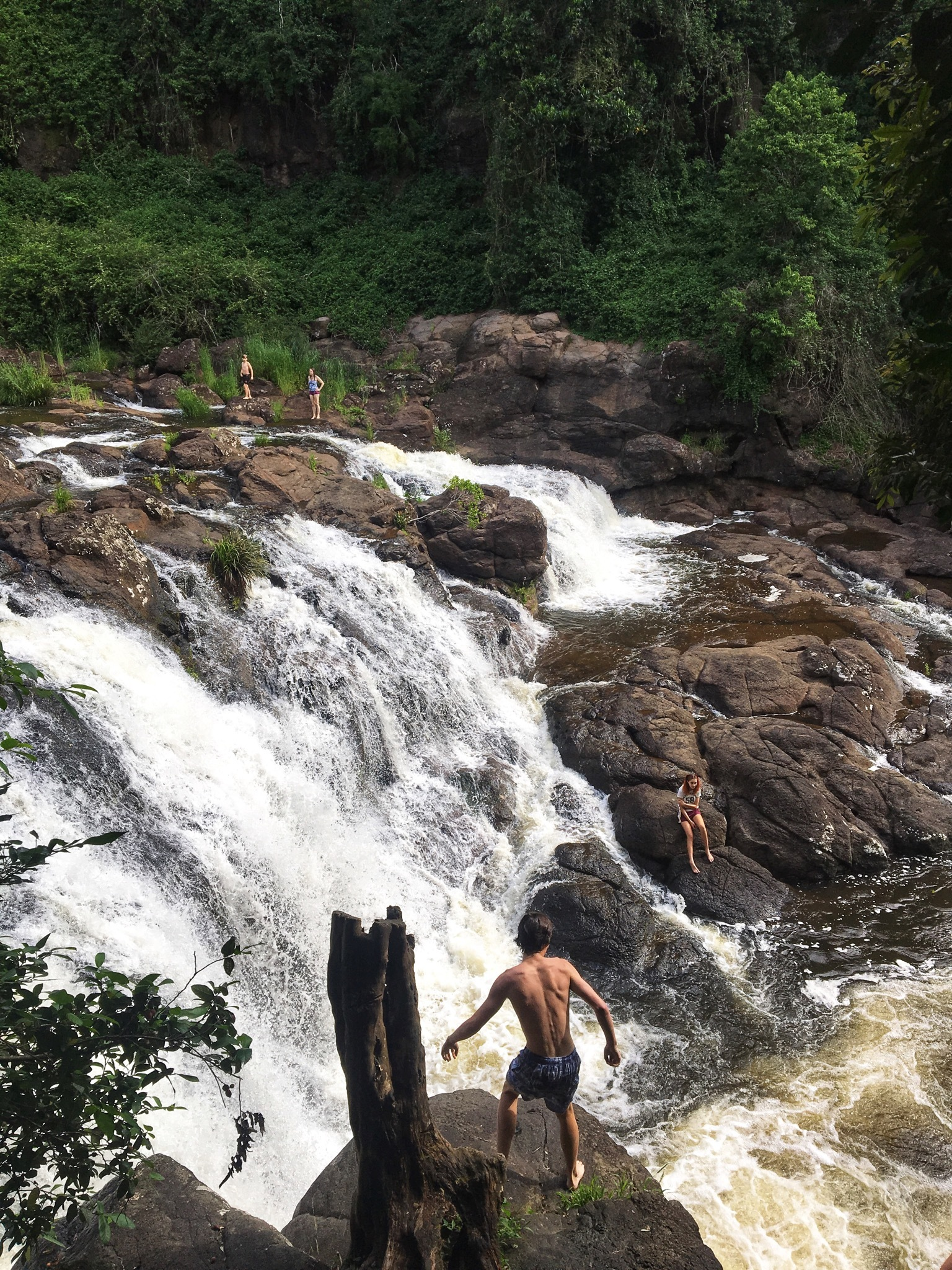 how to get to whian whian falls