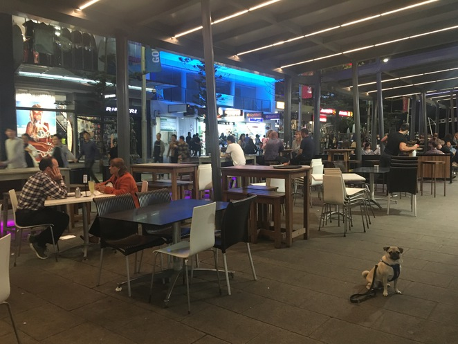 charlie's cafe and bar, cafe, bar, surfers paradise, steak, drinks, restaurant, dog friendly, cavill avenue, gold coast, brisbane, day trip, main beach, open late