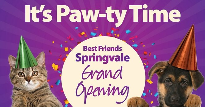 Dog Friendly, Free, Springvale, Victoria, Sales, Shopping, Fun Things to Do, Family Attractions