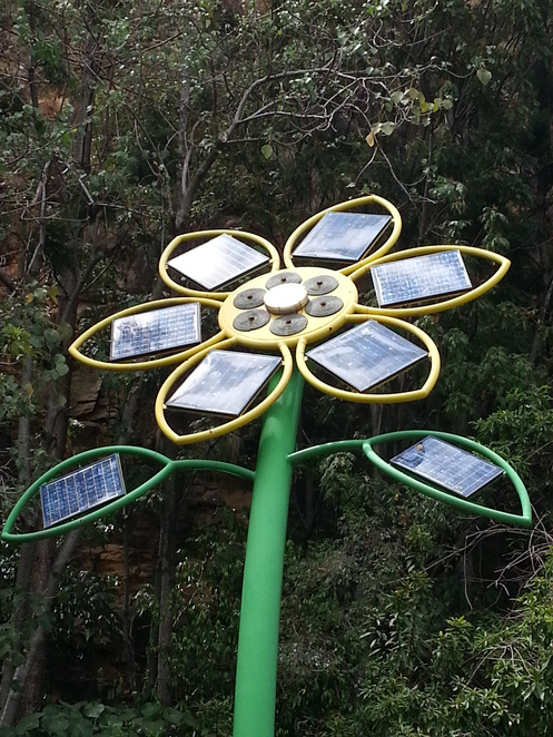 Jonathon Coleman,solar power,Sunflower,Brisbane,Kangaroo Point