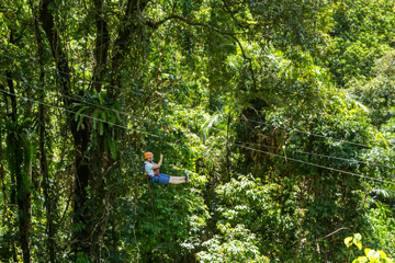 Jungle Surfing canopy tours, things to do in Cape Tribulation, things to do near Cairns