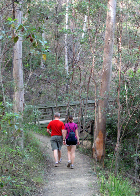 Hikers on the Honeyeater Trail