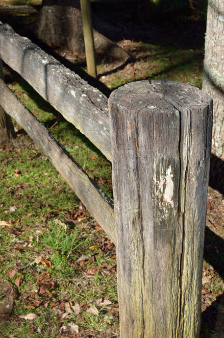 post and rail fence, Mt Tamborine, historic village