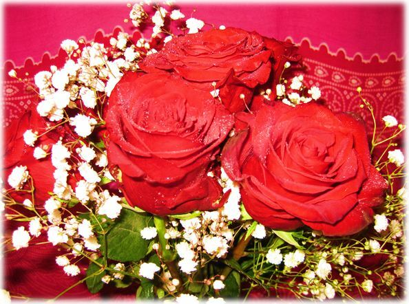 Red roses baby's breath white flowers blood Jesus purity