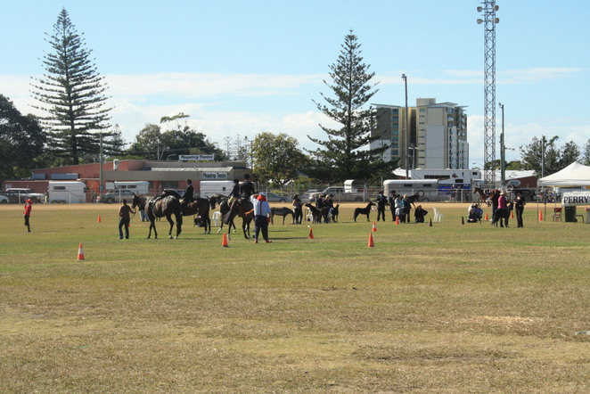 Redcliffe show, country show qld, northside show