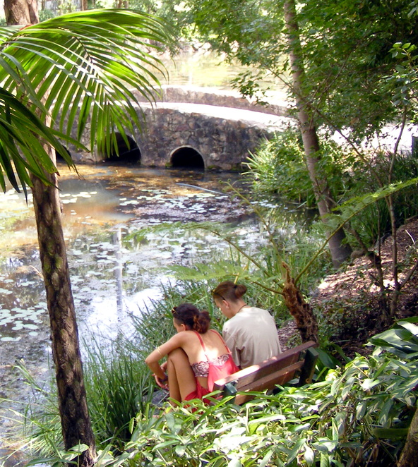 The Mt Tamborine Botanic Gardens is a romantic place to visit