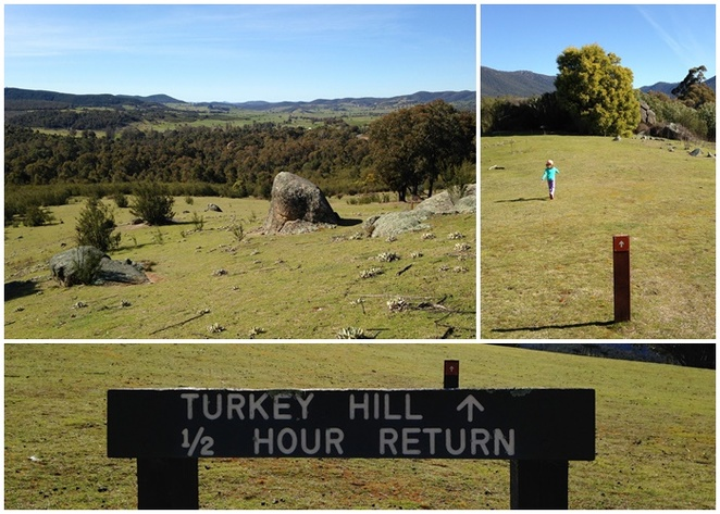 turkey hill, tidbinbilla, canberra, ACT, walks, bushwalks, families, ACT, national parks, hikes, kids, BBQ areas,