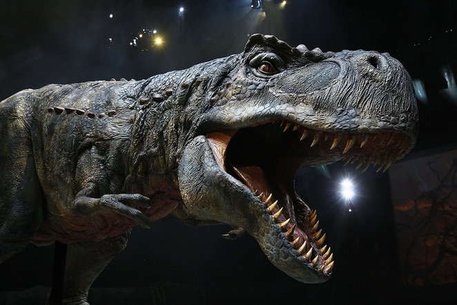 Walking with Dinosaurs - The Arena Spectacular, Dinosaurs Show