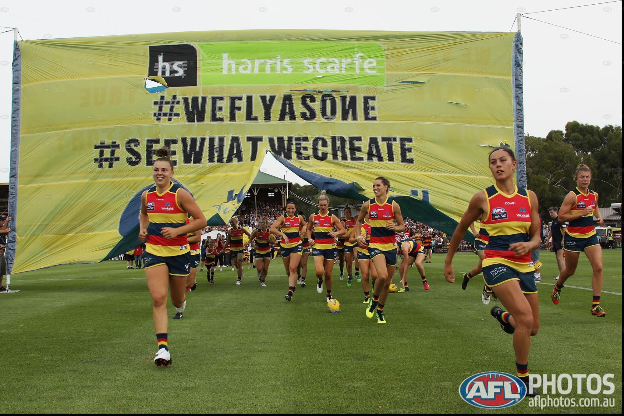 adelaide crows - photo #30