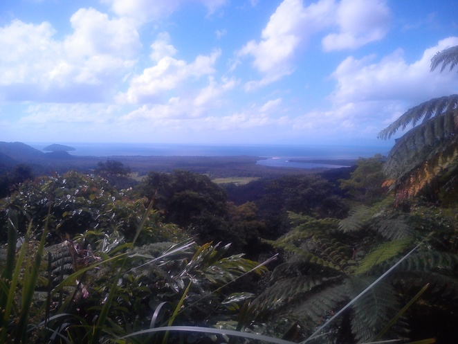 daintree discovery centre, lookout,