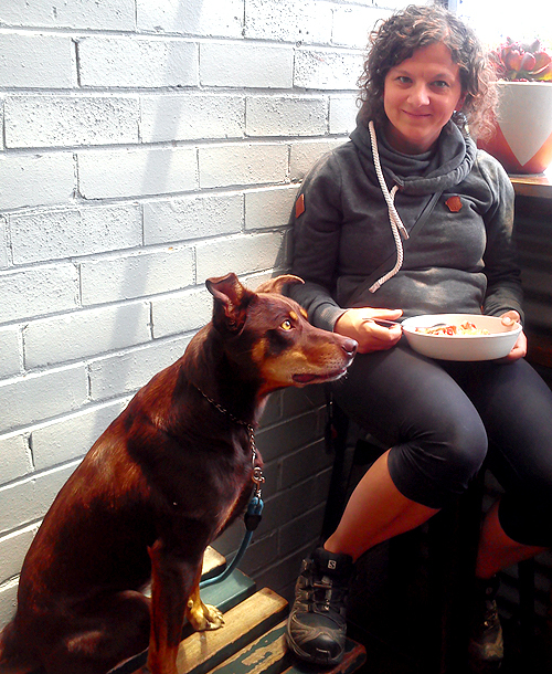 dog friendly, cafe, eltham town, little drop of poison, lunch, dinner, eat, local cafe,