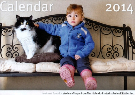 dogs, cats, shelter, no kill, animals, abandoned, abandoned dogs, hahndorf, adelaide hills, pet, calendar