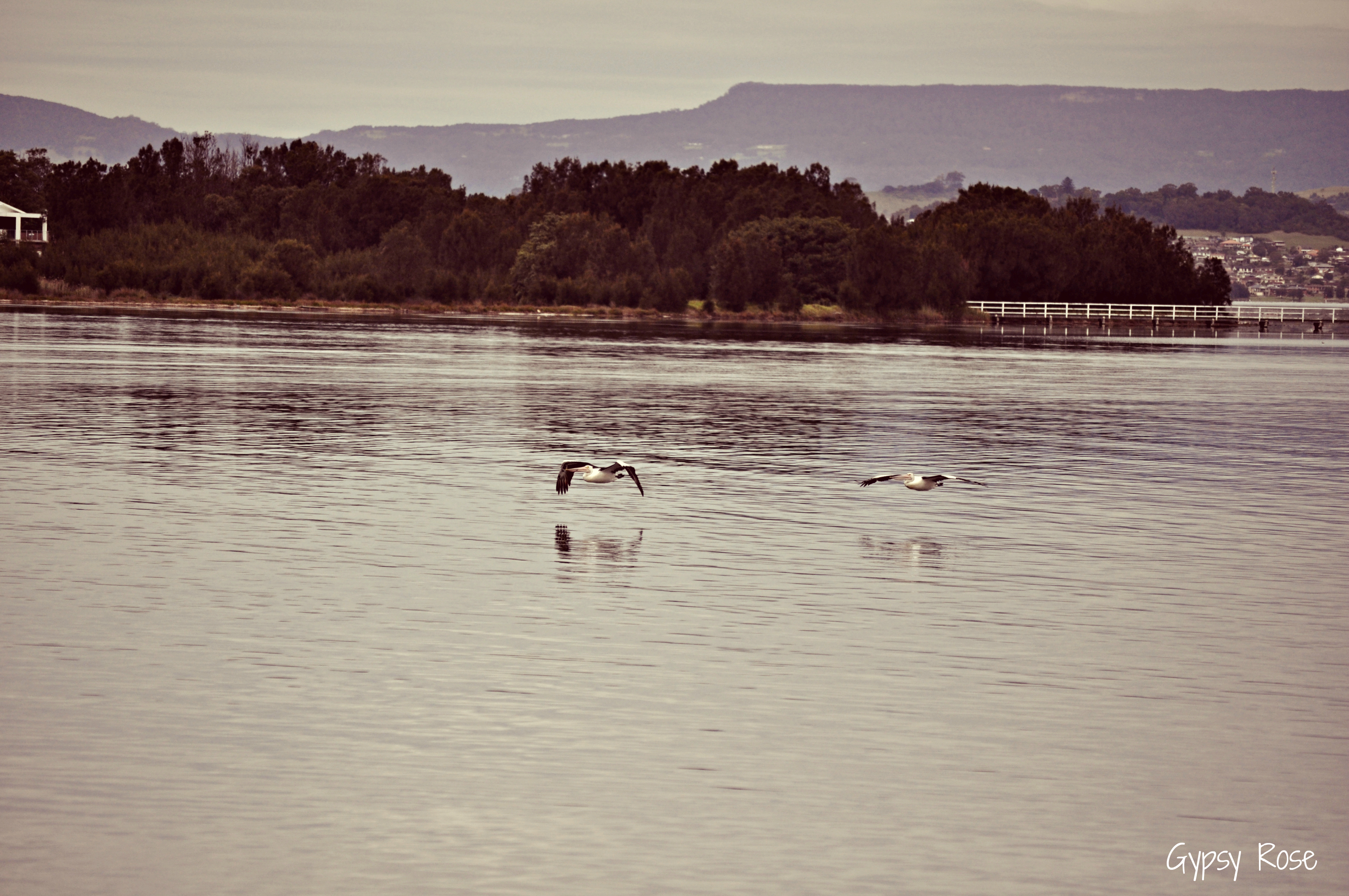 Lake Illawarra (Wollongong & Port Kembla Region)