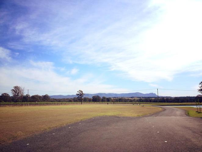 hunter valley, scenery, country, countryside, outdoors, holiday, picturesque, pretty, mountains, fields, vineyards, new south wales, australia, blue sky, winery, tatler
