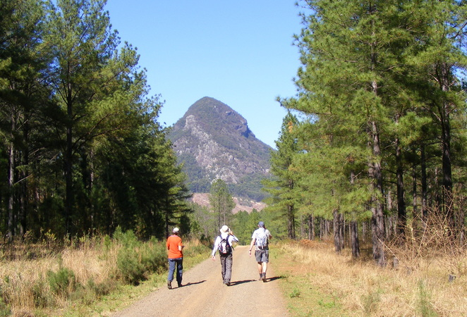 The are a few bush bashing walks in the area such as Mt Callawajune
