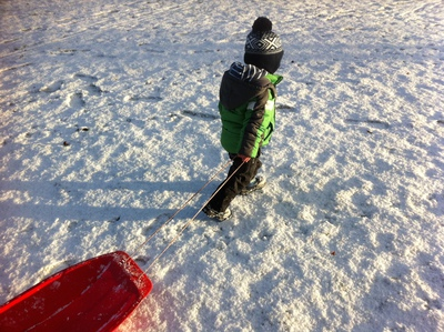 sledge, sledging, toboggan, snow, fun, kids