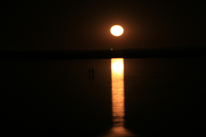 staircase to the moon, hearsons cove, pilbara, karratha