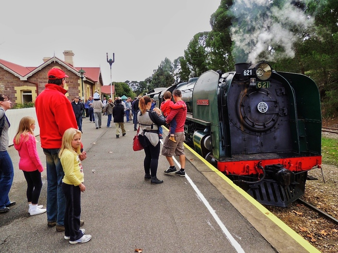 steamranger, steamranger heritage railway, rhythm and rail, adelaide hills, mount barker railway station, mount barker, activities for kids, fun things to do, family entertainment, free family entertainment