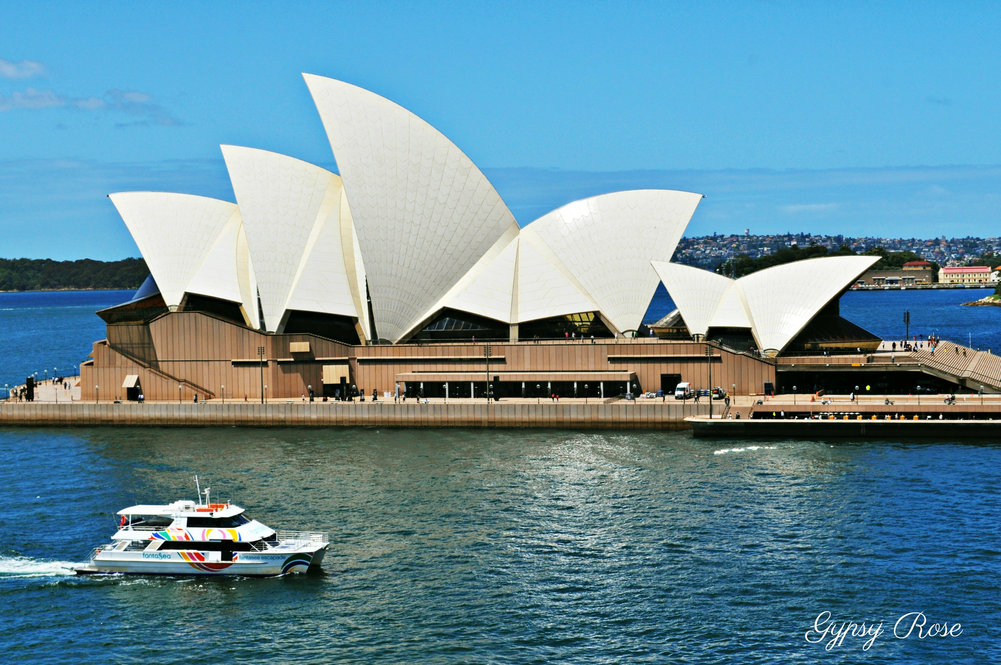 sydney opera house iconic attractions sydney attra31 - Download Image Of The Sydney Opera House  Background
