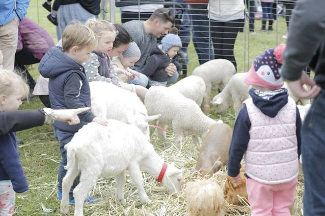 The Potato Shed, Family Fun Day, Free, 2018, Free Stuff for Kids, Mik Maks, Bellarine, Drysdale, Geelong, Mobile Zoo, October 2018,