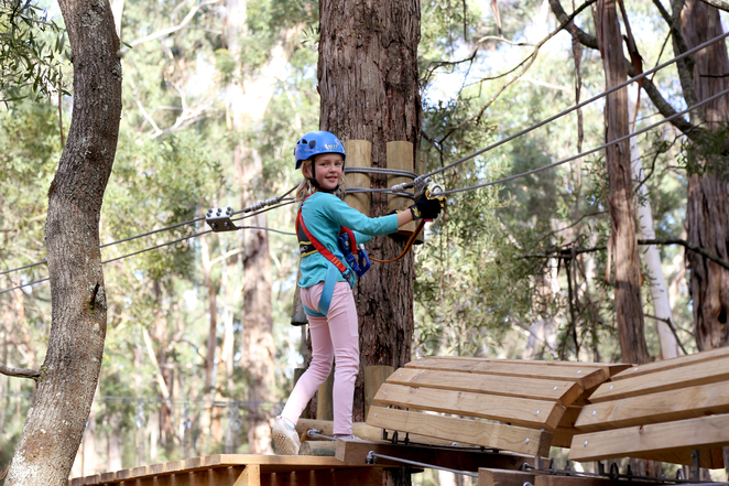 tree adventure, otway park, flying foxes, kids adventure park, eco adventure, bush, daytrip, obstacle course, family day out, challenge course