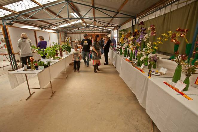 Image courtesy of the Maldon Show Facebook page