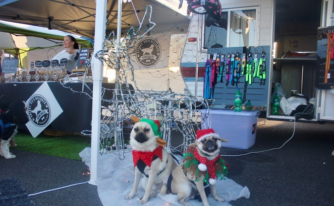 christmas, Brisbane, cheap, celebration, santa paws, Santa photos, doggie ice cream, hugos ice creamery, Laila and me, Kmart, shopping, costume, Christmas markets, treats, festive treats, allira batstone photography, dog friendly, markets, pet friendly
