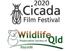 Entry is open to the 2020 Cicada Film Festival