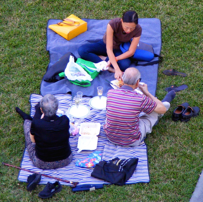 Enjoying a picnic in the park