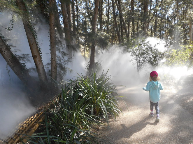 fog sculpture, Fujiko Nakaya, national gallery of australia, sculpture garden, kids, families, children, lake burley griffin, parliamentary triangle, art, sculpture,