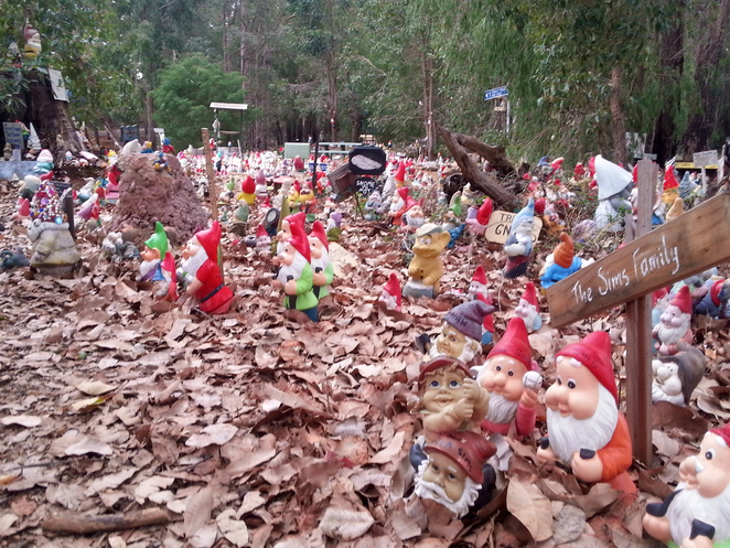 Gnomesville, Garden, Gnome, Bunbury, Southwest, Ferguson Valley, Donnybrook, Tourist, South, West