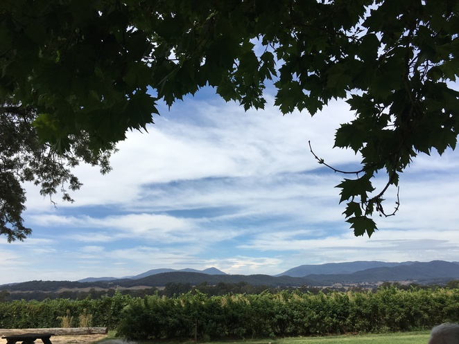 Gracebrook Winery King valley