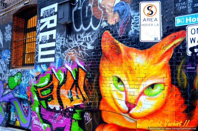 hosier lane, graffiti, art, art lover, Melbourne's artistic laneways
