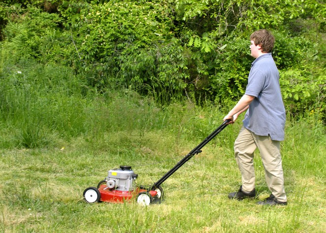 mow grass, reduce vegetation, bushfires, grass fires, bushfire plan, CFA,