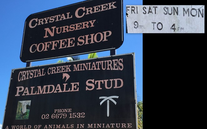 Murwillumbah_Crystal_Creek_Coffee_Gifts_animals_view_
