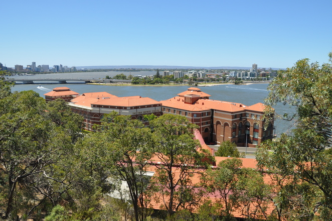 Swan River, View, Kings Park, Lottery West Federation Walkway