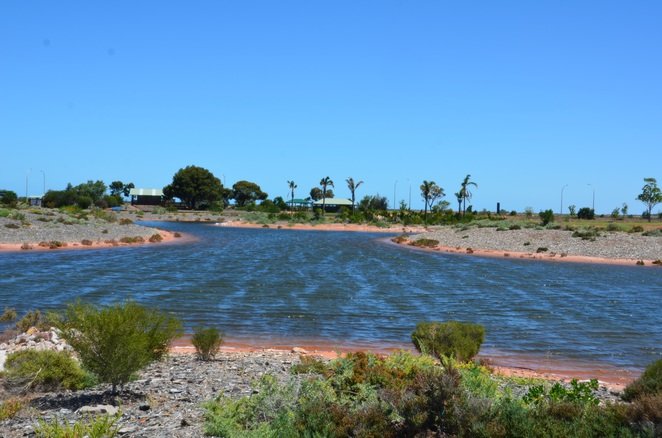 Whyalla Wetlands, Whyalla Norrie, South Australia
