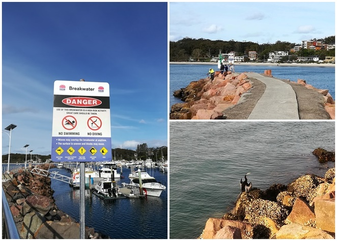 breakwater, nelson bay, fishing, seafood shops, nelson bay marina, best seafood, things to do with kids, school holidays, free,