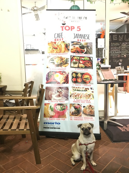 cafe in tokyo, cafe, restaurant, brisbane, algester, southside, southern suburbs, dog friendly, coffee, japanese, asian, fusion, all day breakfast, brunch, dessert, coffee