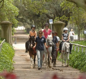 Horse-riding at Centennial Park