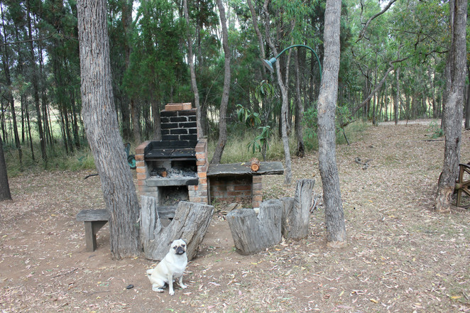 ilkley cottages, mudgee, sydney, accommodation, airbnb, hotel, motel, cottage, dog friendly, kitchen