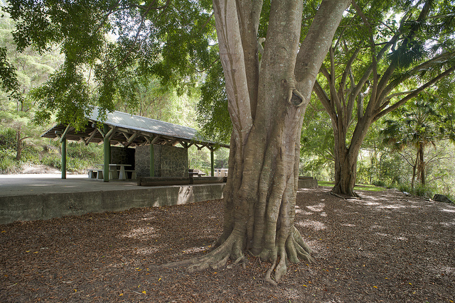 JC Slaughter Picnic Area (Courtesy of Brisbane City Council)